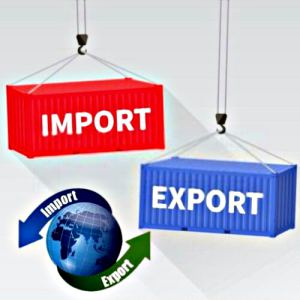 import export code service e seva center pune